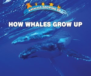 Picture of How Whales Grow Up: