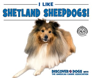 Picture of I Like Shetland Sheepdogs!: