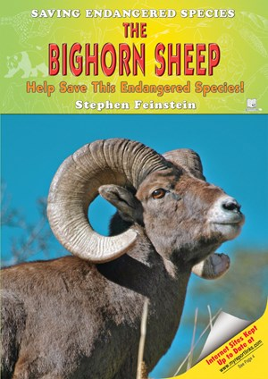 Picture of The Bighorn Sheep: Help Save This Endangered Species!