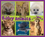 "<h2><a href=""http://www.enslow.com/books/Baby_Animals_of_the_World/2529"">Baby Animals of the World</a></h2>"