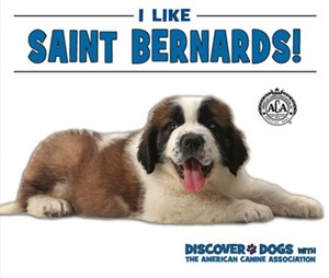 Picture of I Like Saint Bernards!: