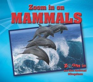 Picture of Mammals: