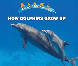 Picture of How Dolphins Grow Up: