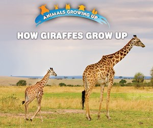 Picture of How Giraffes Grow Up:
