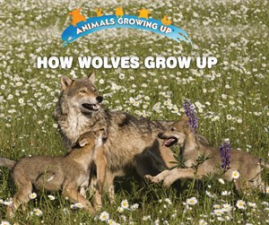 Picture of How Wolves Grow Up: