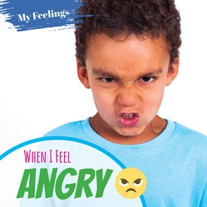 Picture of When I Feel Angry: