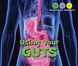 Picture of Using Your Gut: