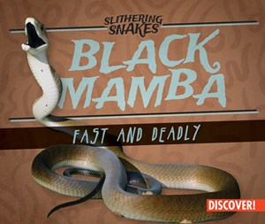 Picture of Black Mamba: Fast and Deadly:
