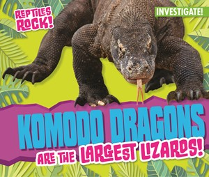 Picture of Komodo Dragons are the Largest Lizards!: