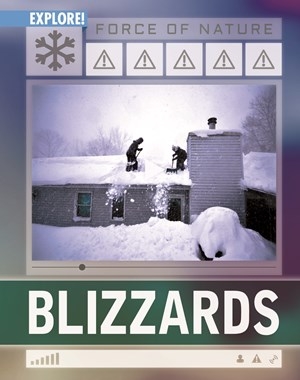 Picture of Blizzards: