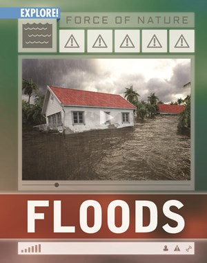 Picture of Floods:
