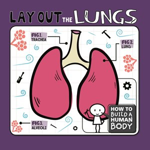 Picture of Lay Out the Lungs: