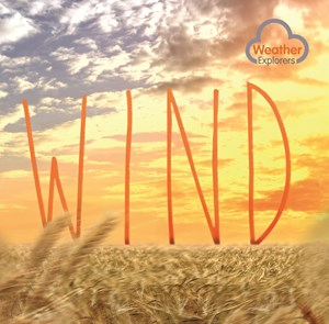 Picture of Wind:
