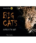 "<h2><a href=""../Big_Cats/558"">Big Cats: <i>Hunters of the Night</i></a></h2>"