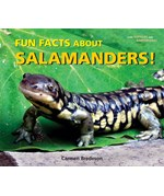 "<h2><a href=""../Fun_Facts_About_Salamanders/1852"">Fun Facts About Salamanders!</a></h2>"