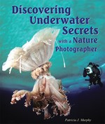 """<h2><a href=""""../Discovering_Underwater_Secrets_with_a_Nature_Photographer/1857"""">Discovering Underwater Secrets with a Nature Photographer</a></h2>"""