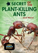 Secret of the Plant-Killing Ants . . . and More!