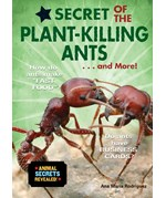 """<h2><a href=""""../Secret_of_the_Plant_Killing_Ants____and_More/551"""">Secret of the Plant-Killing Ants . . . and More!</a></h2>"""