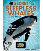 """<h2><a href=""""../Secret_of_the_Sleepless_Whales____and_More/554"""">Secret of the Sleepless Whales . . . and More!</a></h2>"""