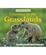 "<h2><a href=""../Counting_in_the_Grasslands/925"">Counting in the Grasslands</a></h2>"