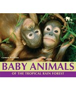 """<h2><a href=""""../books/Baby_Animals_of_the_Tropical_Rain_Forest/2526"""">Baby Animals of the Tropical Rain Forest</a></h2>"""