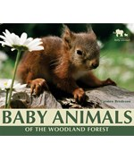 """<h2><a href=""""../books/Baby_Animals_of_the_Woodland_Forest/2528"""">Baby Animals of the Woodland Forest</a></h2>"""
