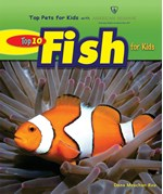 "<h2><a href=""../Top_10_Fish_for_Kids/3593"">Top 10 Fish for Kids</a></h2>"