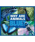 Why Are Animals Blue?