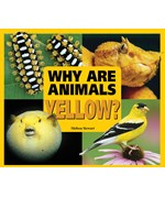 "<h2><a href=""../Why_Are_Animals_Yellow/2797"">Why Are Animals Yellow?</a></h2>"