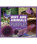 Why Are Animals Purple?