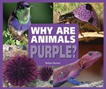 """<h2><a href=""""../books/Why_Are_Animals_Purple/2795"""">Why Are Animals Purple?</a></h2>"""