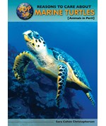 "<h2><a href=""../Top_50_Reasons_to_Care_About_Marine_Turtles/3585"">Top 50 Reasons to Care About Marine Turtles: <i>Animals in Peril</i></a></h2>"