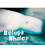 "<h2><a href=""../Beluga_Whales/562"">Beluga Whales: <i>Animals of the Snow and Ice</i></a></h2>"