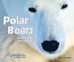 "<h2><a href=""../Polar_Bears/565"">Polar Bears: <i>Hunters of the Snow and Ice</i></a></h2>"