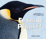 """<h2><a href=""""../Emperor_Penguins/563"""">Emperor Penguins: <i>Animals of the Snow and Ice</i></a></h2>"""