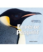 "<h2><a href=""../Emperor_Penguins/563"">Emperor Penguins: <i>Animals of the Snow and Ice</i></a></h2>"