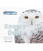 "<h2><a href=""../Snowy_Owls/567"">Snowy Owls: <i>Hunters of the Snow and Ice</i></a></h2>"