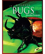 """<h2><a href=""""../Discover_Bugs/1008"""">Discover Bugs</a></h2>"""