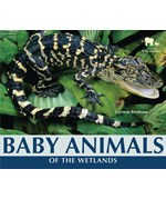 "<h2><a href=""../Baby_Animals_of_the_Wetlands/2527"">Baby Animals of the Wetlands</a></h2>"