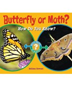 "<h2><a href=""../Butterfly_or_Moth/3815"">Butterfly or Moth?: <i>How Do You Know?</i></a></h2>"