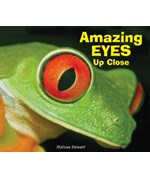 "<h2><a href=""../Amazing_Eyes_Up_Close/544"">Amazing Eyes Up Close</a></h2>"