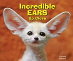 "<h2><a href=""../Incredible_Ears_Up_Close/546"">Incredible Ears Up Close</a></h2>"