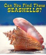 "<h2><a href=""../Can_You_Find_These_Seashells/353"">Can You Find These Seashells?</a></h2>"