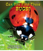 "<h2><a href=""../Can_You_Find_These_Bugs/349"">Can You Find These Bugs?</a></h2>"