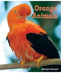 Orange Animals