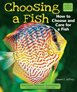 "<h2><a href=""../Choosing_a_Fish/444"">Choosing a Fish: <i>How to Choose and Care for a Fish</i></a></h2>"