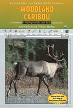 "<h2><a href=""../books/The_Woodland_Caribou/1176"">The Woodland Caribou: <i>A MyReportLinks.com Book</i></a></h2>"