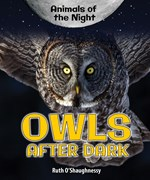 "<h2><a href=""../Owls_After_Dark/4437"">Owls After Dark</a></h2>"