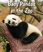 "<h2><a href=""../Baby_Pandas_at_the_Zoo/4426"">Baby Pandas at the Zoo</a></h2>"