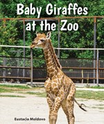 "<h2><a href=""../Baby_Giraffes_at_the_Zoo/4423"">Baby Giraffes at the Zoo</a></h2>"